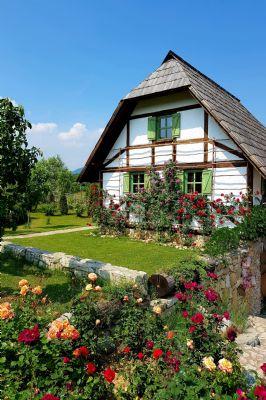 Reitzenhain Wohnungen, Reitzenhain Wohnung kaufen