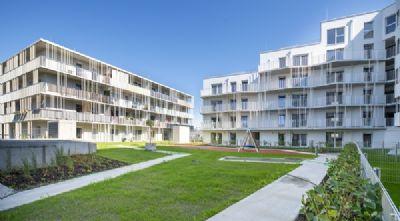 St. Pölten Wohnungen, St. Pölten Wohnung mieten