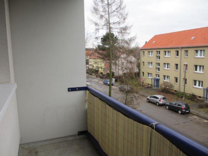 In großzügiger Singlewohnung - auch WG geeignet - Wohnen und Leben in Potsdam Babelsberg Stern