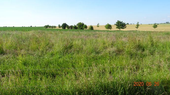 4 Baugrundstücke im Einzugsgebiet Jena-Großschwabhausen im Allgemeinen Wohngebiet