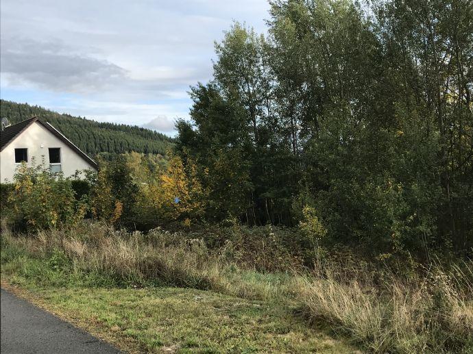 Feines kleines Grundstück mit Südausrichtung im Edertal in Bad Berleburg - Schwarzenau