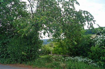 Remshalden Grundstücke, Remshalden Grundstück kaufen