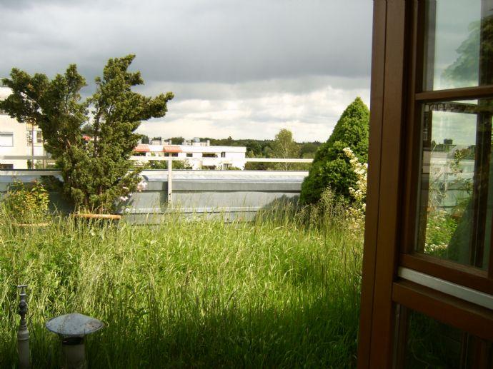 Wohnung mit Aussicht und Dachgarten