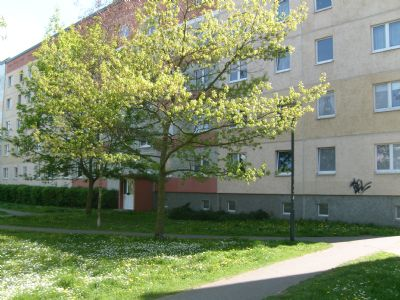 Neubrandenburg Wohnungen, Neubrandenburg Wohnung mieten