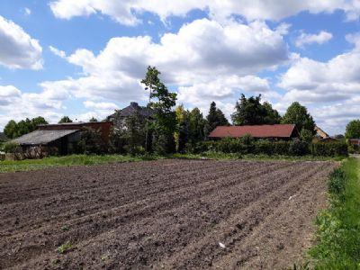 Colbitz Grundstücke, Colbitz Grundstück kaufen