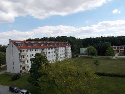Seelingstädt Wohnungen, Seelingstädt Wohnung mieten