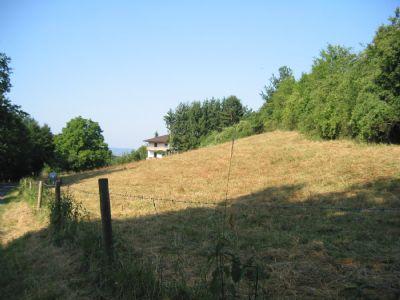 Schlüchtern Grundstücke, Schlüchtern Grundstück kaufen