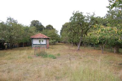 Baugrundstück und Pferdeweide in Beverstedt - Wellen