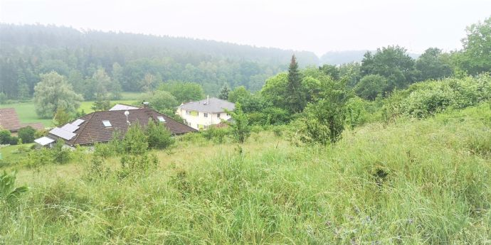 Traumgrundstück in Dietenhofen mit Hanglage in Südausrichtung