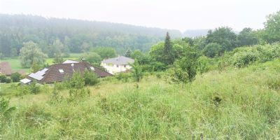 Dietenhofen Grundstücke, Dietenhofen Grundstück kaufen