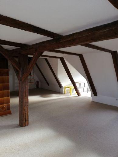 Loft im Dachgeschoss, für Sportliche - 2-Zimmer-Wohnung mit Tageslicht-Wannenbad