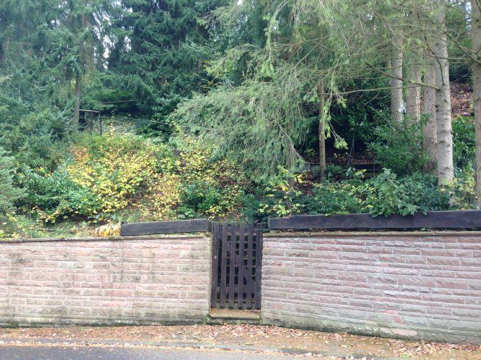Aach bei Trier, Hanggrundstück mit Doppelgarage, Vorkaufsrecht für oberhalb gelegenes EFH