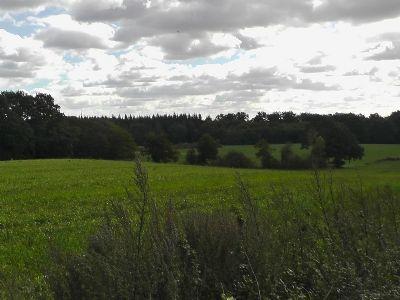 Pronstorf Grundstücke, Pronstorf Grundstück kaufen