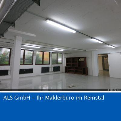 Waiblingen Halle, Waiblingen Hallenfläche