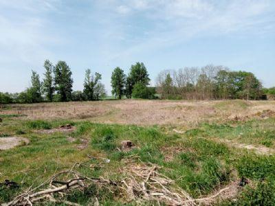 Mittenwalde Industrieflächen, Lagerflächen, Produktionshalle, Serviceflächen
