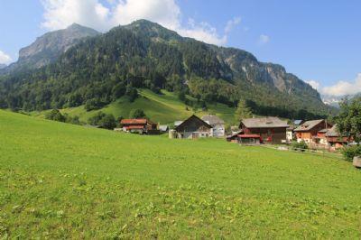 Weisstannen  Grundstücke, Weisstannen  Grundstück kaufen