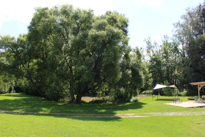 Gartengrundstück mit Teich und Grillplatz