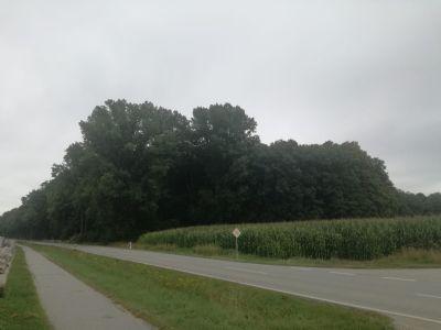 Eichendorf Bauernhöfe, Landwirtschaft, Eichendorf Forstwirtschaft
