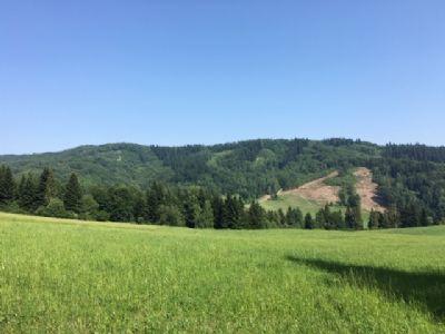 Presov Bauernhöfe, Landwirtschaft, Presov Forstwirtschaft