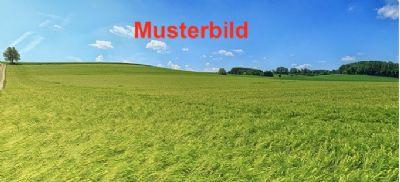 Butzbach Grundstücke, Butzbach Grundstück kaufen