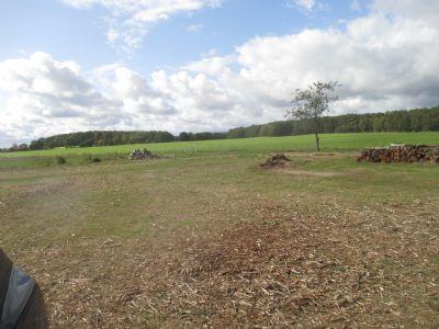 Westergellersen Grundstücke, Westergellersen Grundstück kaufen