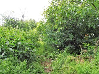 Elmshorn Grundstücke, Elmshorn Grundstück kaufen