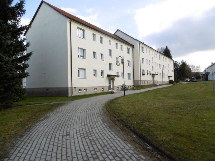 2-Raum-Wohnung modern saniert in Top Lage, in Neustadt i. Sa.
