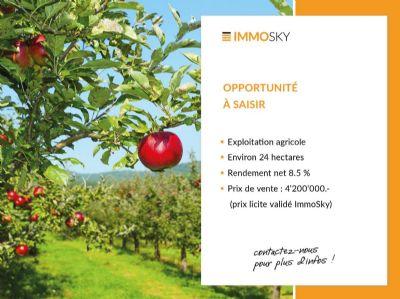 Cheseaux-Noréaz Bauernhöfe, Landwirtschaft, Cheseaux-Noréaz Forstwirtschaft