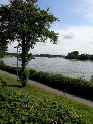 Saniertes Einfamilien-Reihenhaus mit direktem Rheinblick in Benrath - Schöne Aussicht