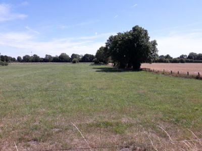 Voerde Bauernhöfe, Landwirtschaft, Voerde Forstwirtschaft
