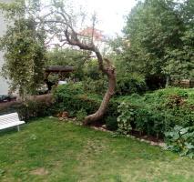 Rarität 2 Zimmer-Wohnung mit Gartenanteil