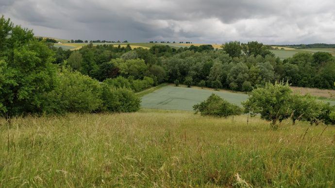 Landwirtschaftsfläche in Großbottwar