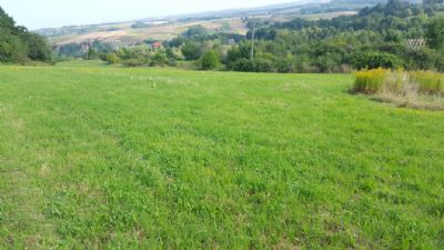 Czchów Grundstücke, Czchów Grundstück kaufen