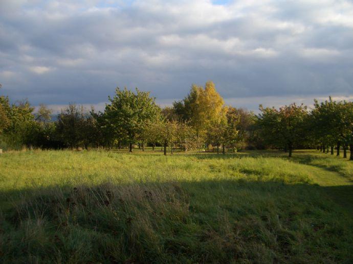 Wir suchen dringend Grundstücke, Wohnungen, Häuser in Forchheim und Umgebung zu kaufen, vermieten