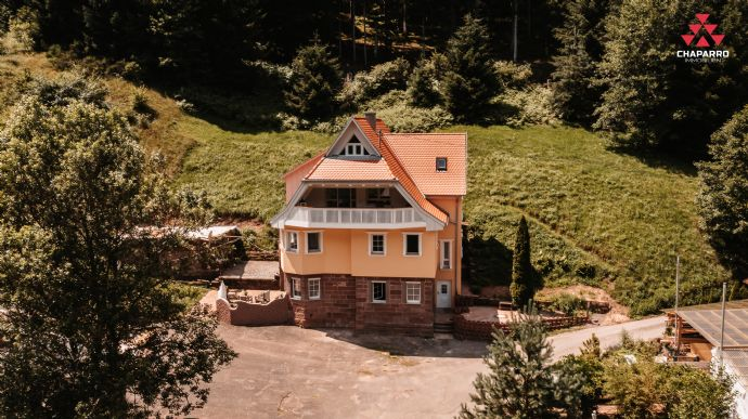 Historische Landhausvilla mit modernster Technik -