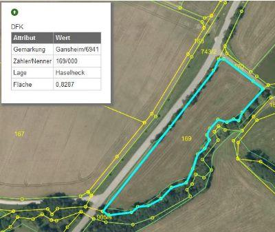Marxheim Grundstücke, Marxheim Grundstück kaufen