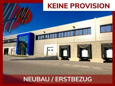 Sulzbach Halle, Sulzbach Hallenfläche