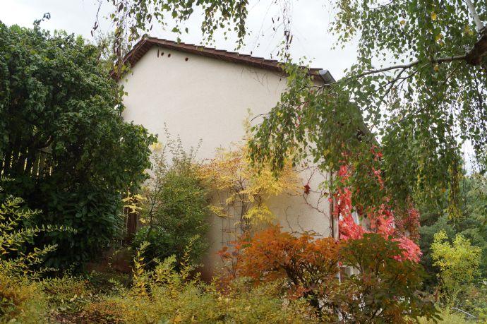 BAUPLATZ in Vorbereitung - Tolles Grundstück in Hambach unterhalb des Hambacher Schlosses