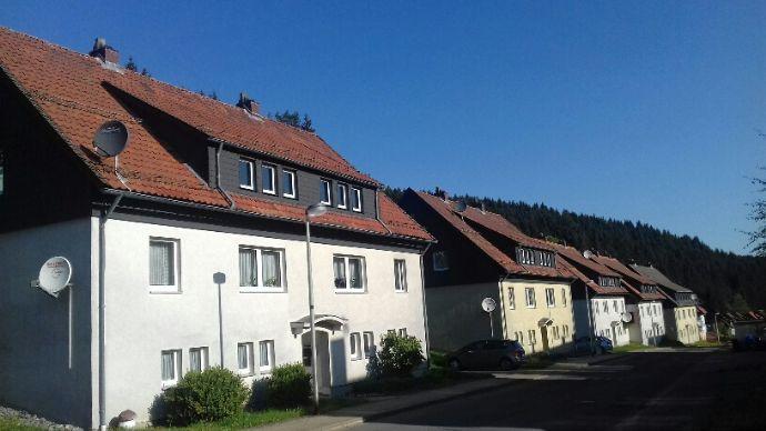 Wohnung mieten altenau jetzt mietwohnungen finden for Wohnung finden