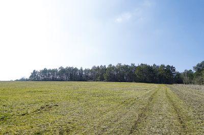 3,6 ha Wald- und Grünfläche