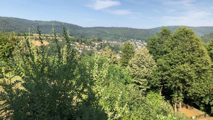 Schöne helle 4-Zimmer Wohnung in Heidelberg
