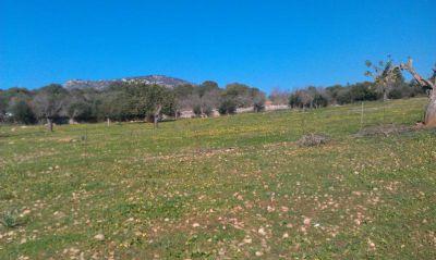 Sant Llorenc Grundstücke, Sant Llorenc Grundstück kaufen