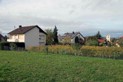 Vogtsburg Häuser, Vogtsburg Haus kaufen
