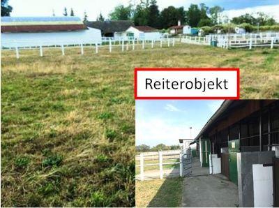 Dallgow-Döberitz Bauernhöfe, Landwirtschaft, Dallgow-Döberitz Forstwirtschaft