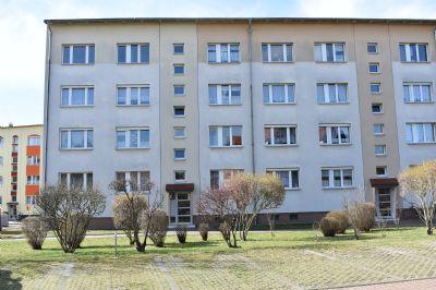 Zwenkau Wohnungen, Zwenkau Wohnung mieten