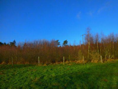 Natur-/Freizeitgrundstück (kein Bauland!) in Hasenmoor zu verkaufen!