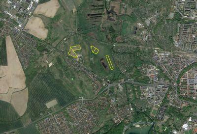 Neubrandenburg Bauernhöfe, Landwirtschaft, Neubrandenburg Forstwirtschaft