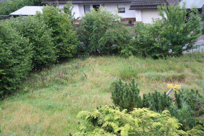 Sonniger Blick in das Edertal - Bad Berleburg-Schwarzenau