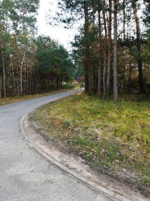Gusborn Grundstücke, Gusborn Grundstück kaufen