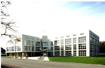Gundelfingen Büros, Büroräume, Büroflächen